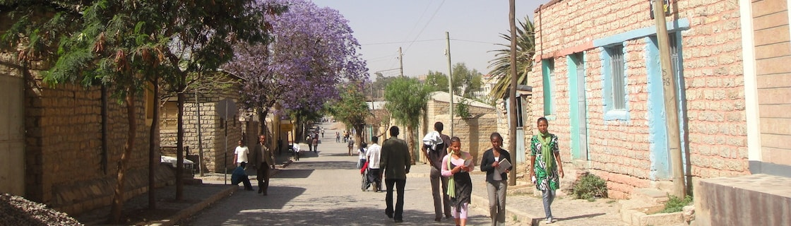 ICES20 at Mekelle University: 20th International Conference of
